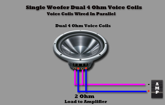 Dual Coil Subwoofer Wiring Diagram Trusted How Do I Wire 4 Ohm Voice For One: 2 Ohm Single Voice Coil Subwoofer Wiring Diagram At Jornalmilenio.com