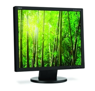 NEC AccuSync AS191 LCD Monitor