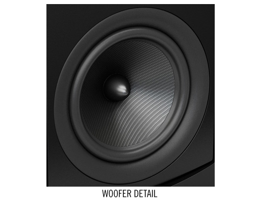 Aperion Audio Verus Grand Speakers - Woofer detail